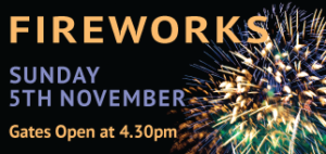 Fireworks Display @ Totton & Eling Cricket Club | Totton | United Kingdom