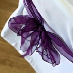Chair Cover - Totton & Eling CC Events-min