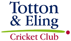 Cricket in Totton